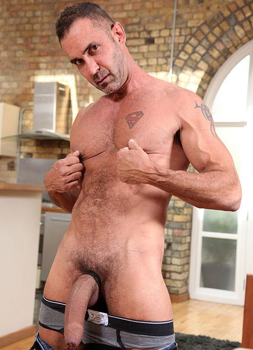 Hung bear gay