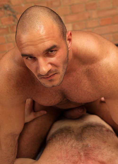 hairy Ted dick colunga